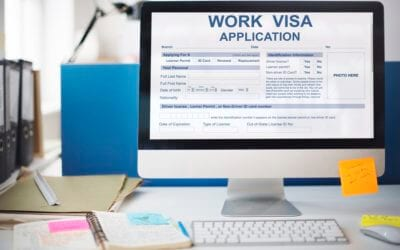 Should We Use Employment Visas for Professional Positions?